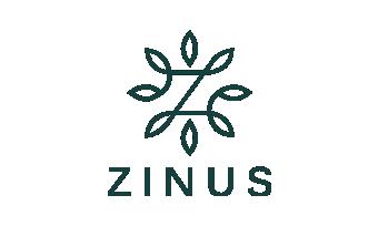 klien pt zinus